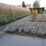 Strakke tuin als visitekaartje voor bedrijf en instelling
