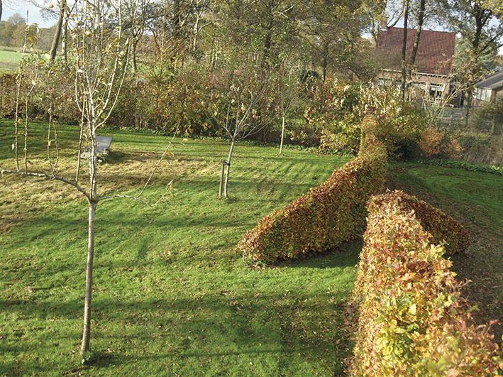 boomgaard_bloemrijk_grasland_beukenhaag