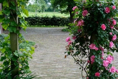 pergola-roos-landelijk