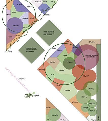 tuinontwerp_beplantingsplan_lier