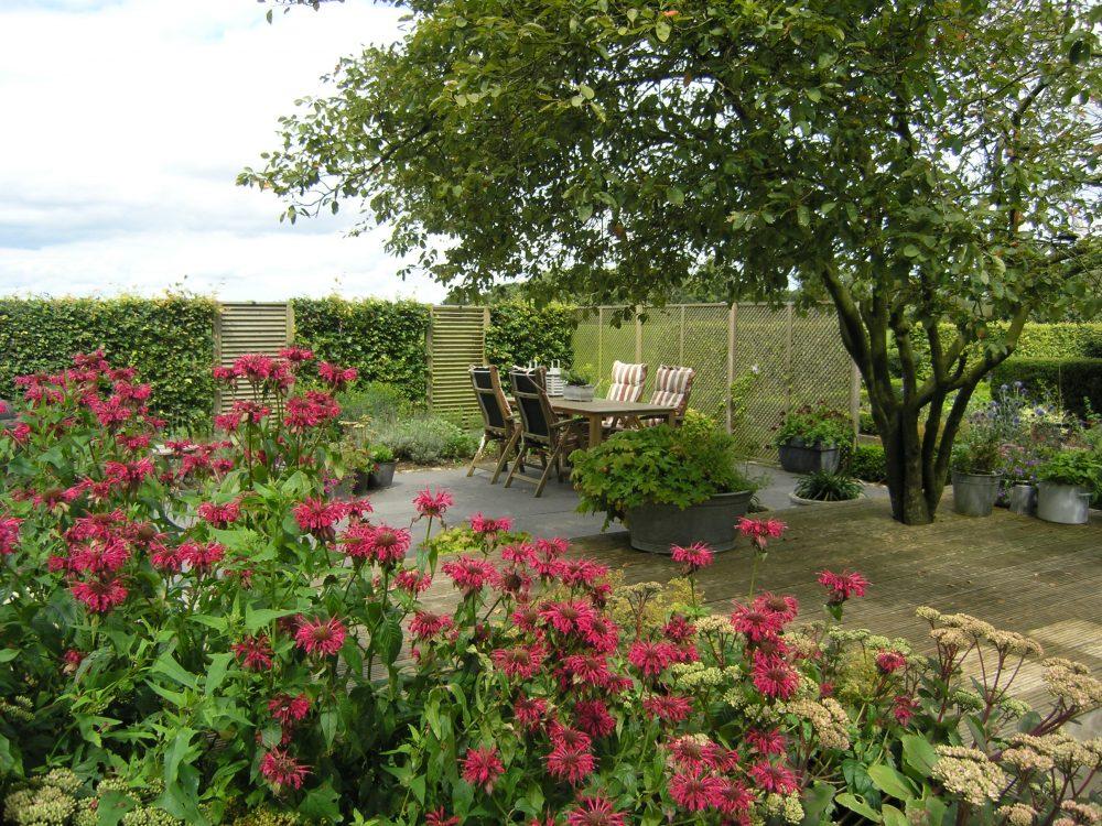 landelijke tuin drenthe b&b bloemen onderhoudsvrij tuinontwerp tuinontwerper ©Groenerwaard