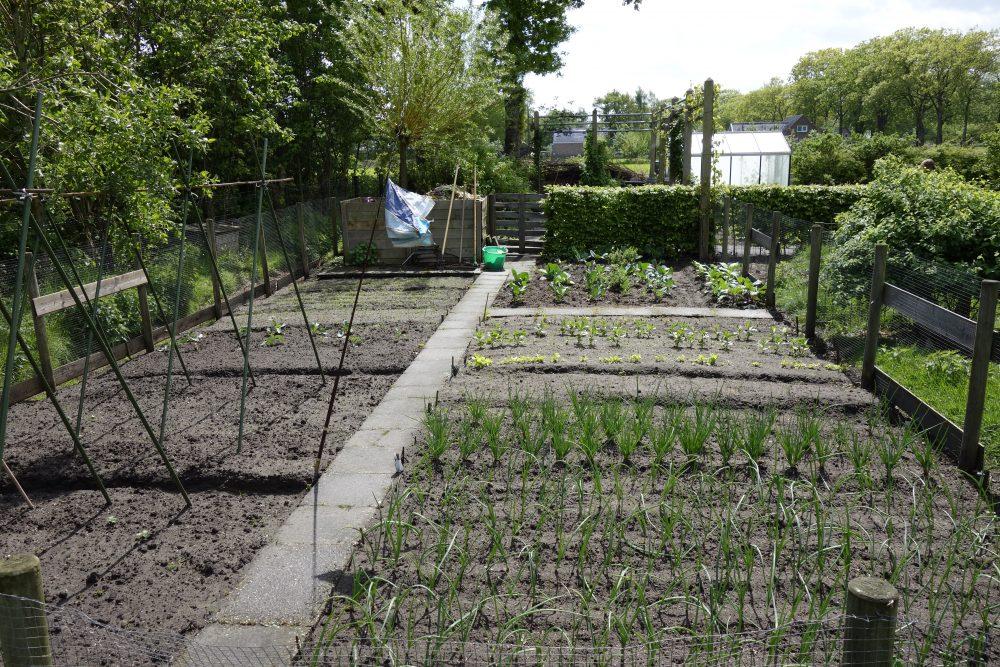 moestuin kruidentuin tuinieren ©Groenerwaard