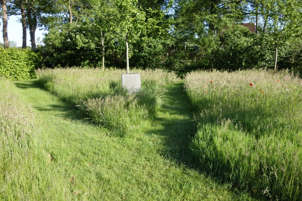 bloemenweide bloemrijk grasland boomgaard ©Groenerwaard