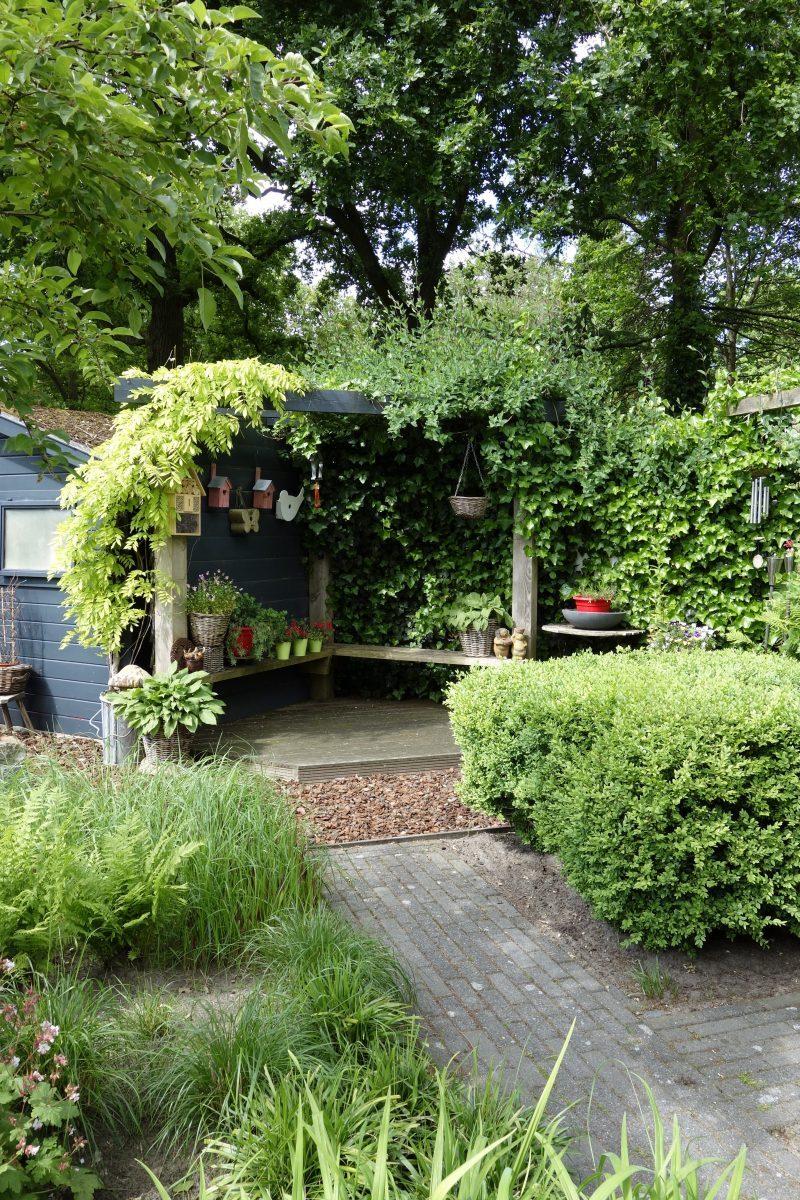tuin pergola huisje vrolijk drenthe ©Groenerwaard