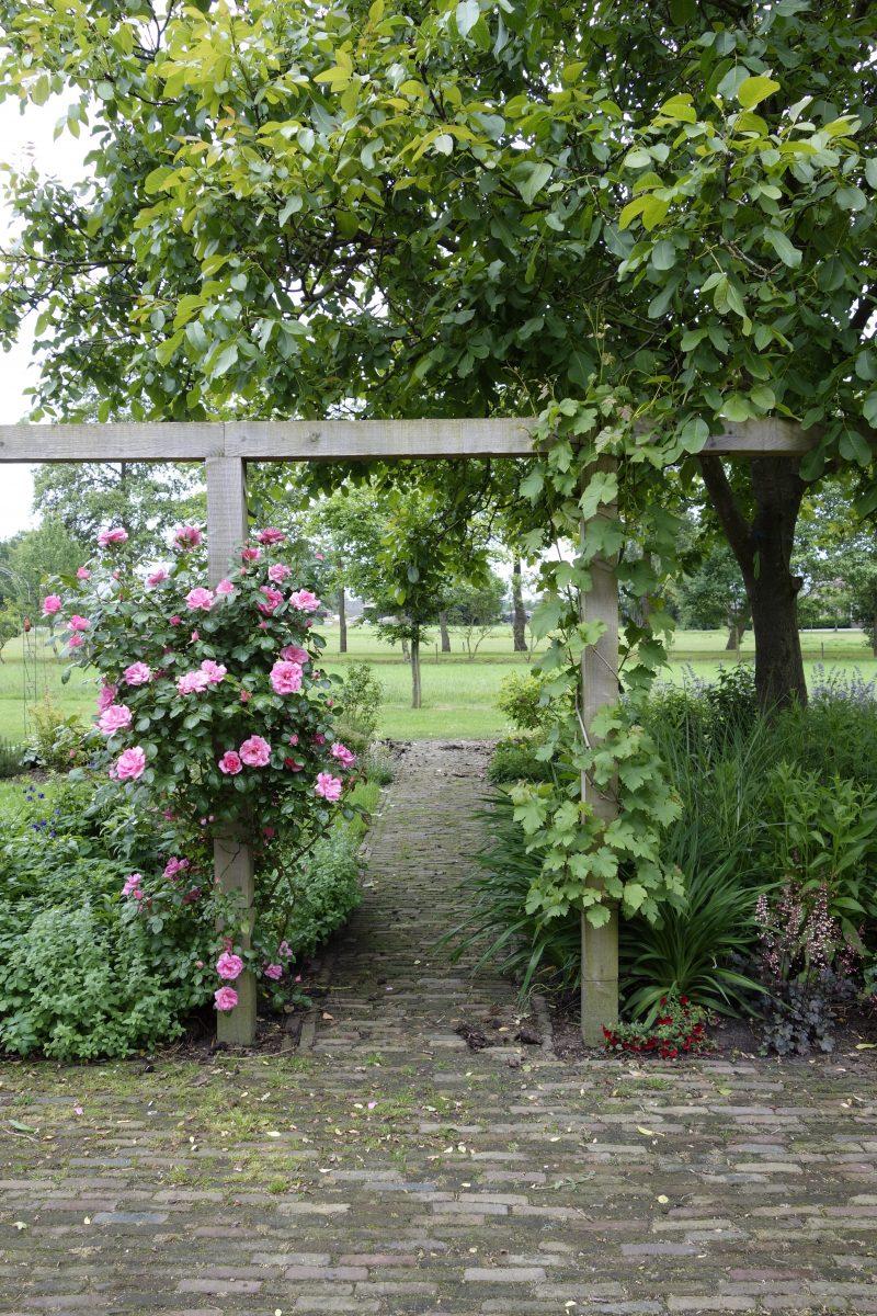 erf boeren tuin landelijk pergola terras tuinontwerper ©Groenerwaard