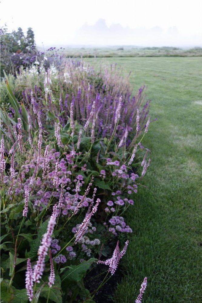 vaste planten border onderhoudsvriendelijk stolwijk krimpenerwaard groene hart ©Groenerwaard