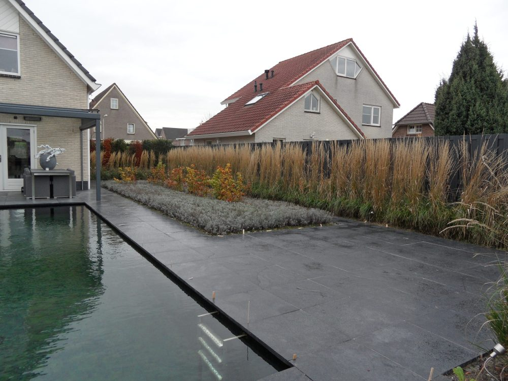 moderne-tuin-vijver zwemvijver siergras helofytenfilter ©Groenerwaard