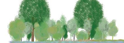 schets bos beplanting ontwerp plan ©Groenerwaard