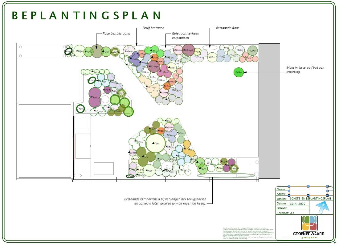 Beplantingsplan, Plantplan, Borderplan, Plantadvies, Beplantingsontwerp Beplantingsplan, Plantplan, Borderplan, Plantadvies, Beplantingsontwerp ©Groenerwaard