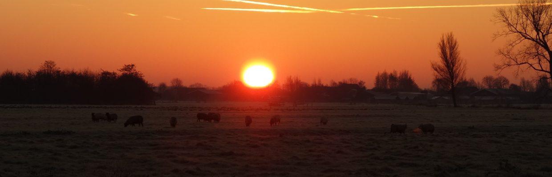 ondergaande zon in Stolwijk